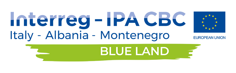 BLUE LAND footer logo